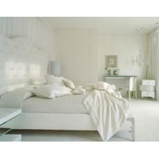 Цветовые колориты – дизайн интерьера в белых тонах