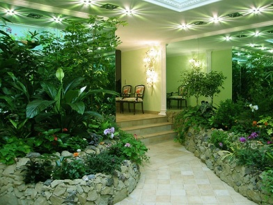 Растения в дизайне интерьера