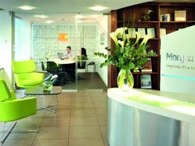 разработка дизайна интерьера офиса в зеленоватом оттенке